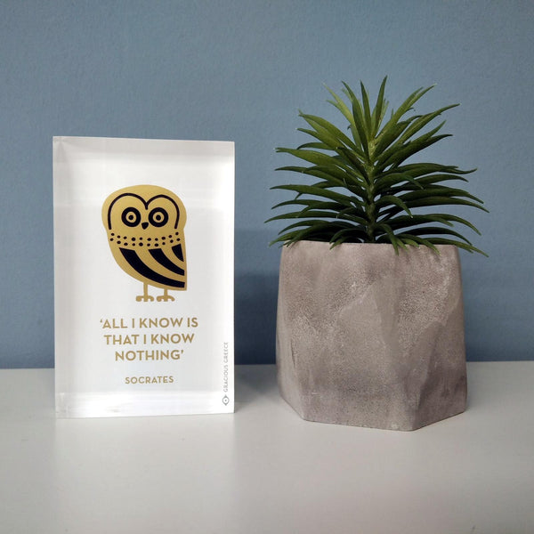 The owl handmade paperweight gift idea for philosophy nerds