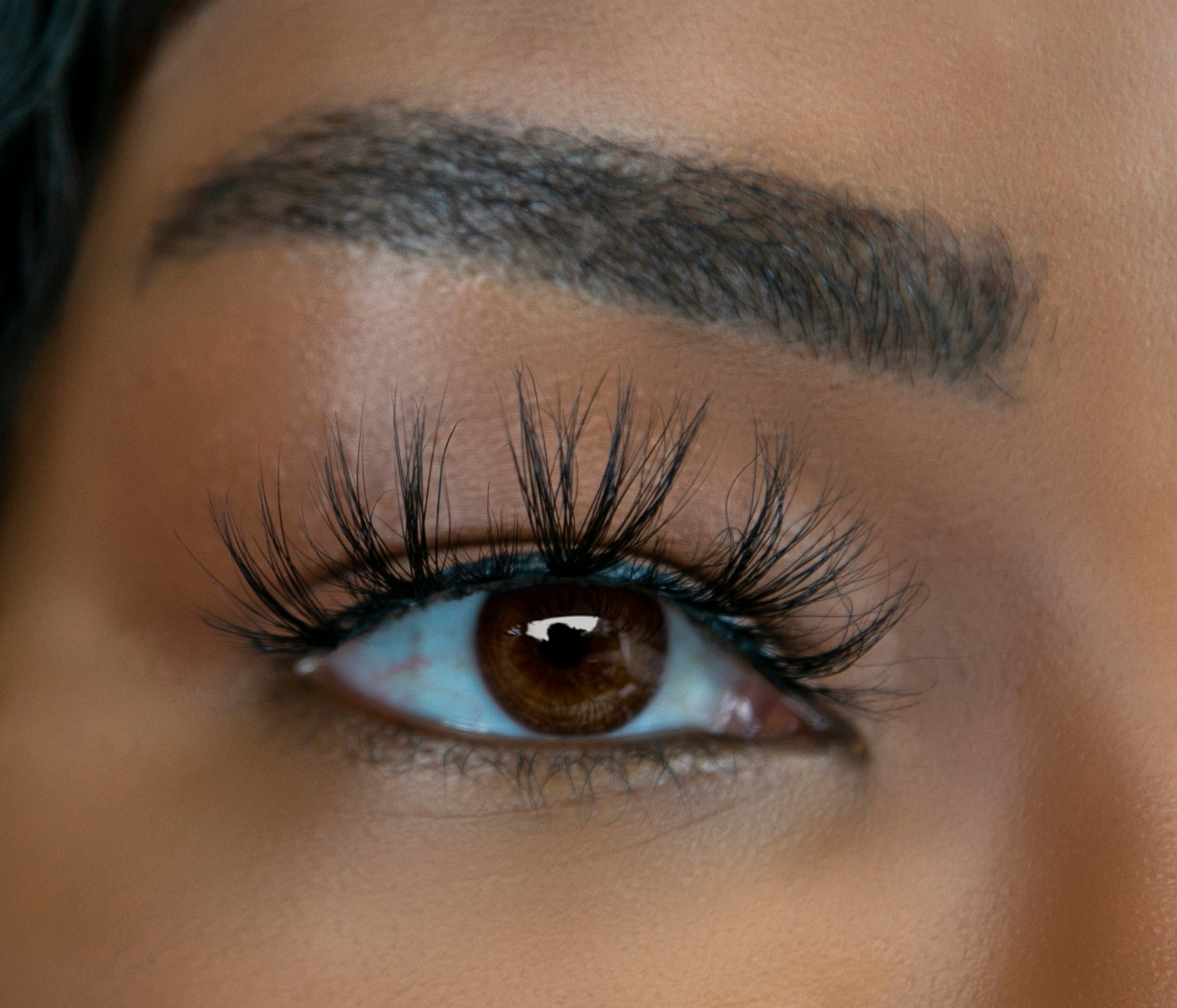 SAGITTARIUS 4D MINK LASH (MAGNETS OPTIONAL)