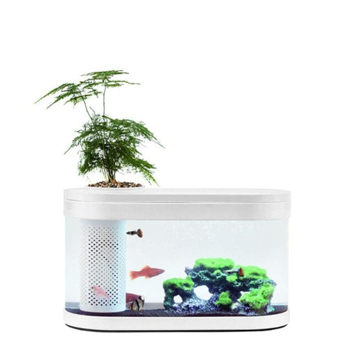Ecological Fish Tank Aquaponics Small Water Garden - [Homistic]