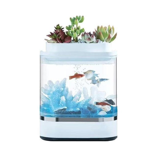 Self-cleaning Mini Aquarium with Small Garden - [Homistic]