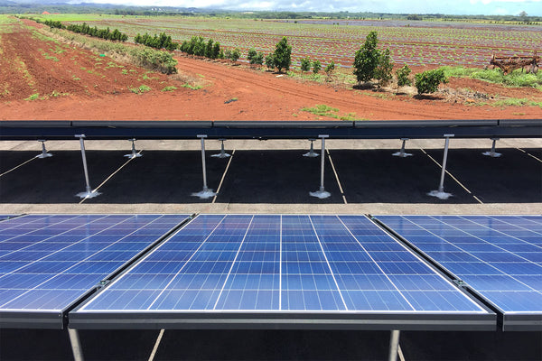 A Farm Goes Solar for 24/7 Power