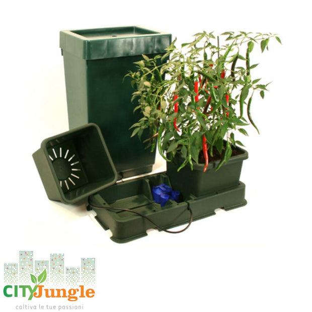 Autopot - Easy2Grow Kit 2 Vasi (Con Tanica 47Lt +Raccordo 6Mm) Sistema