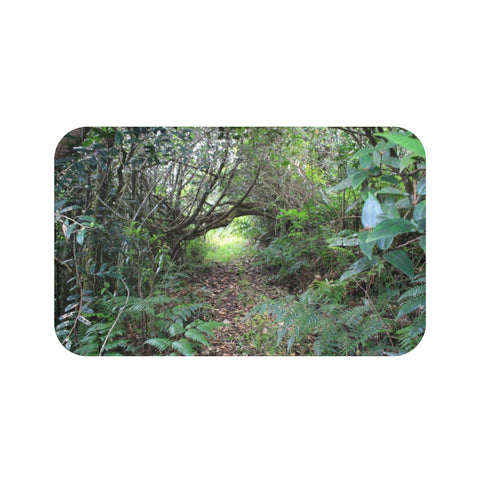 Bath Mat - Holy Spirit river explorations - El Yunque PR - Tradewinds trail