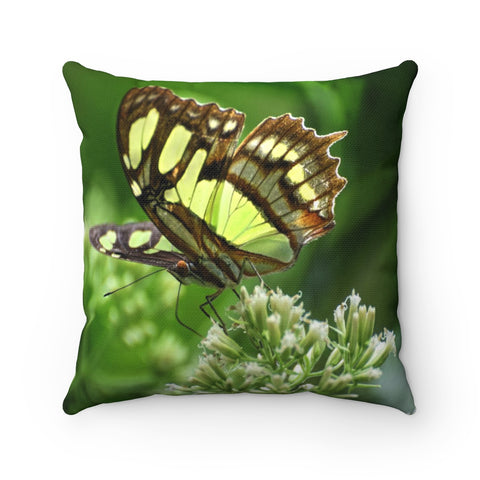 Butterfly in Rio Sabana park - El Yunque rain forest PR - Spun Polyester Square Pillow