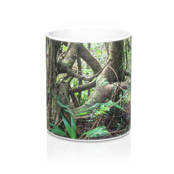 Mug 11oz -  Holy Spirit river deep forest explorations