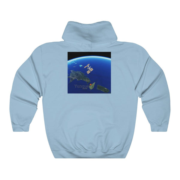 Space DEAL $28 - Gildan 18500 - Unisex Hooded Sweatshirt - Astronaut Christina Koch back on Earth after record-breaking 328 days in space - ISS over PR, DR