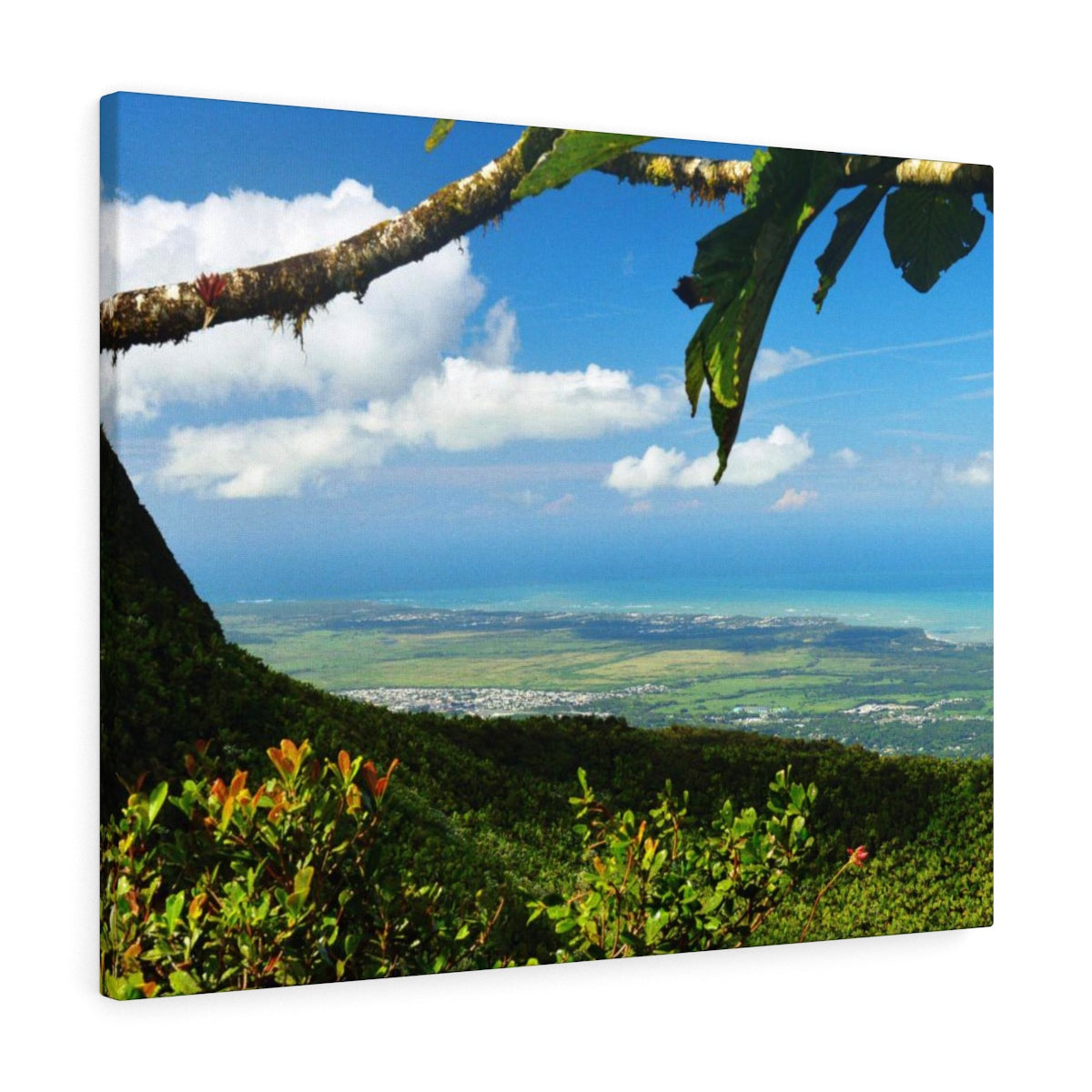Lucky clear day in Tres Picachos near El Yunque at 3,175 feet - El Yunque rainforest - Canvas Gallery Wraps (bundle)