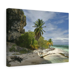 Remote Mona Island Pajaros Beach edge next to cave - Canvas Gallery Wraps - SingleClick.store