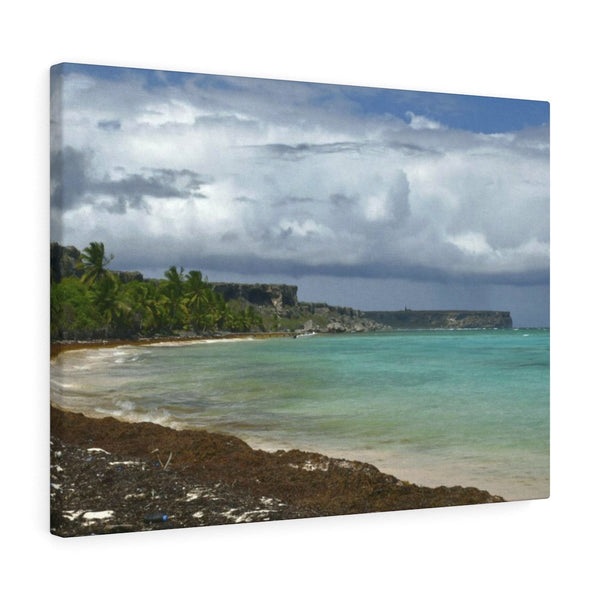 Remote Mona Island Pajaros Beach view of Plateau - Canvas Gallery Wraps - SingleClick.store