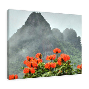 Telephoto View from Yokahu tower after a rainstorm - El Yunque rainforest - Canvas Gallery Wraps - SingleClick.store