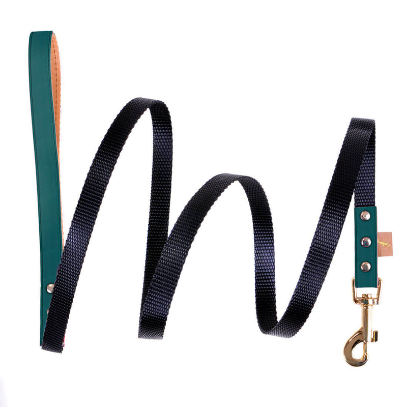 The Classic Pup: British Racing Green - Leash