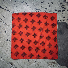Load image into Gallery viewer, Creek Water Cinnamon Bandana