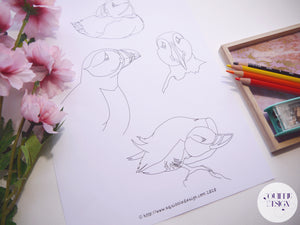Colouring Page - Puffins!