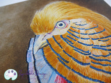 Load image into Gallery viewer, Art Print - Mr Golden Pheasant | Victorian Animal Family