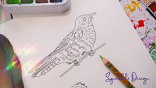 Load image into Gallery viewer, Colouring Page - Shining Cuckoo