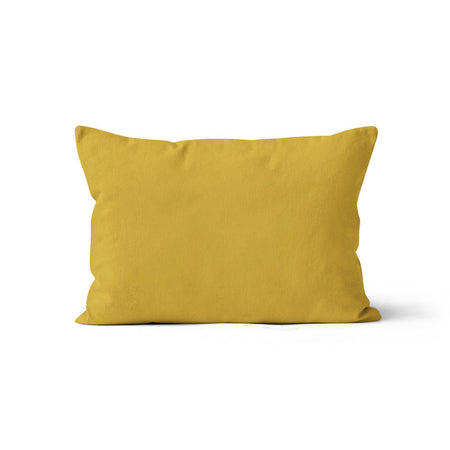 Sluggin' along - minky pillowcase