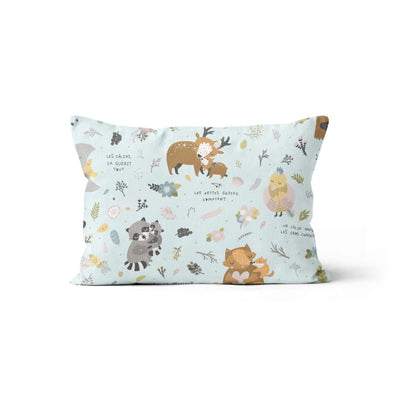 Hugs and kisses - minky pillowcase
