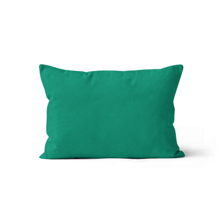 Spicy christmas morning - minky pillowcase