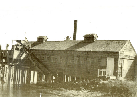 Oysterville Cannery