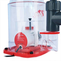 Reef Octopus Regal 200SSS Protein Skimmer - Online Only