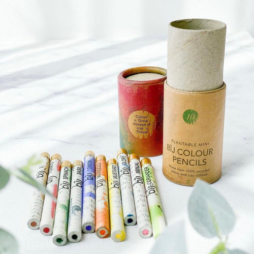Plantable Color Pencils 可種植筆 > plantable pencil > corporate gift > Comfily Living Hong Kong