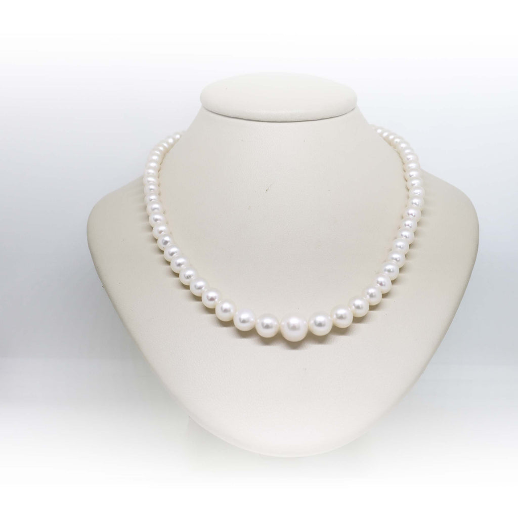 Graduated white freshwater pearls