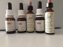 Load image into Gallery viewer, I AM AWESOME! All natural body sprays using Bach Flower Remedies and other powerful plant medicine and essential oils of Bergamot & Peppermint for confidence, self worth, self love | Strongest Minds