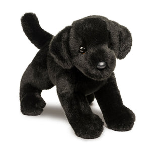 Brewster Black Lab