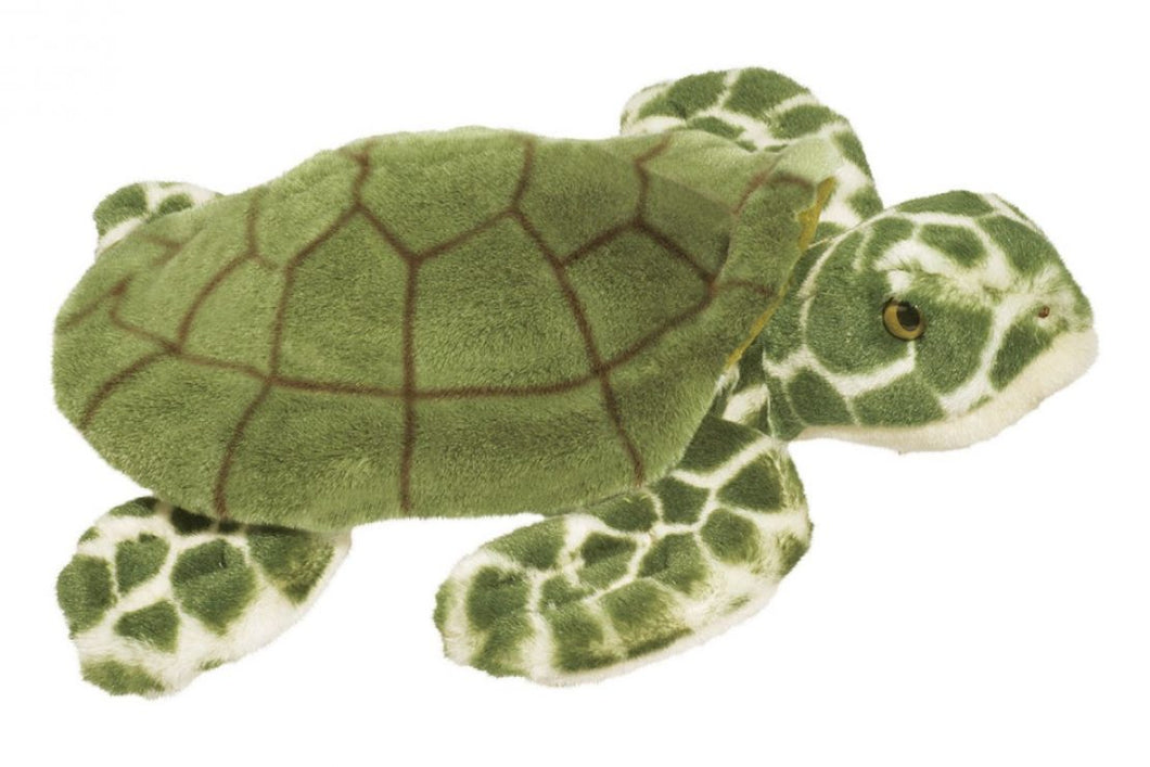 Toti Sea Turtle