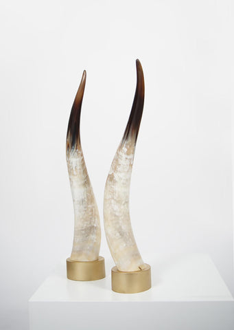 Ankole Light Decorative Horn Set - Black Sheep (White Light)