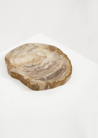 Petrified Wood Light Barkless Round Vessel - Black Sheep (White Light)