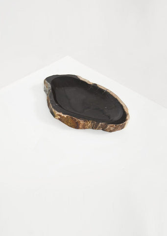 Petrified Wood Dark Round Vessel - Black Sheep (White Light)
