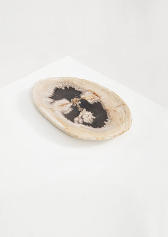 Petrified Wood Dark Barkless Round Vessel - Black Sheep (White Light)
