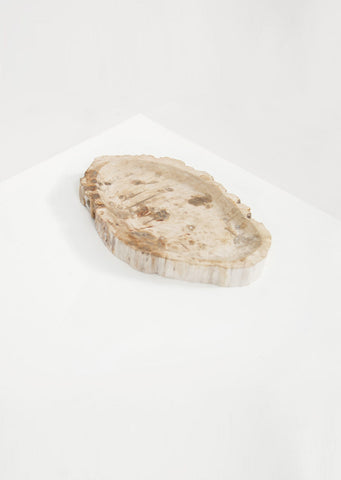 Petrified Wood Light Round Vessel - Black Sheep (White Light)