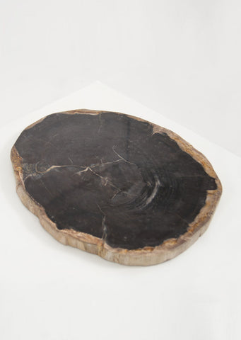 Petrified Wood Dark Decorative Slab