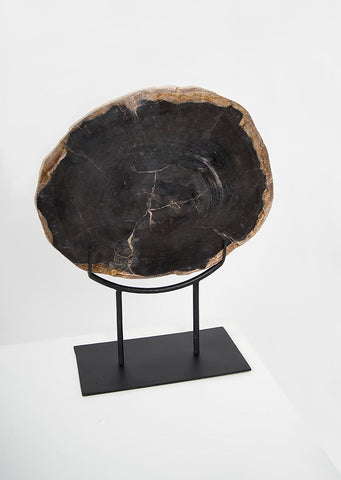 Petrified Wood Dark Decorative Slab on Stand