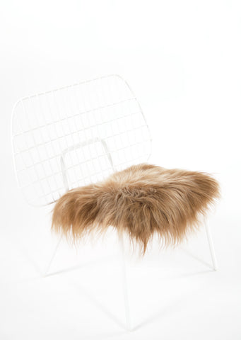 Brown Icelandic Sheepskin Chair Pad - Black Sheep (White Light)