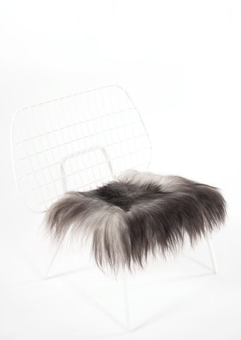 Grey Icelandic Sheepskin Chair Pad - Black Sheep (White Light)