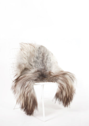 Grey Icelandic Sheepskin - Black Sheep (White Light)