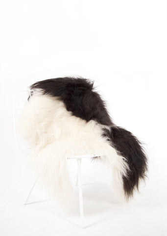 Spotted Icelandic Sheepskin | Random - Black Sheep (White Light)