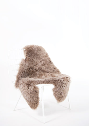 Shorn Taupe Icelandic Sheepskin - Black Sheep (White Light)