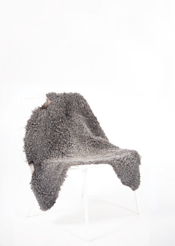 Grey Short Wool Gotland Sheepskin - Black Sheep (White Light)