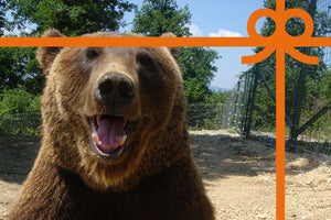eCard: Happy Bearthday - World Animal Protection