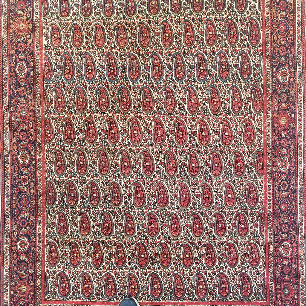 "4'3"" x 5'9""   Antique Persian Sarouk Ferahan Paisley Design Rug Angle View"
