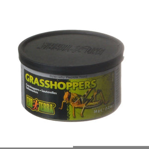 Exo-Terra Grasshoppers Reptile Food
