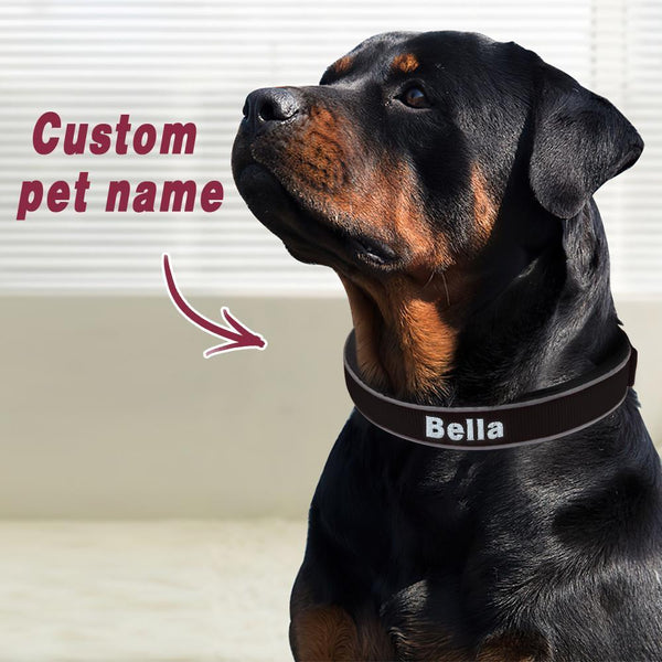 Custom Engraved Pet Collar Nylon Collar Black-White Word