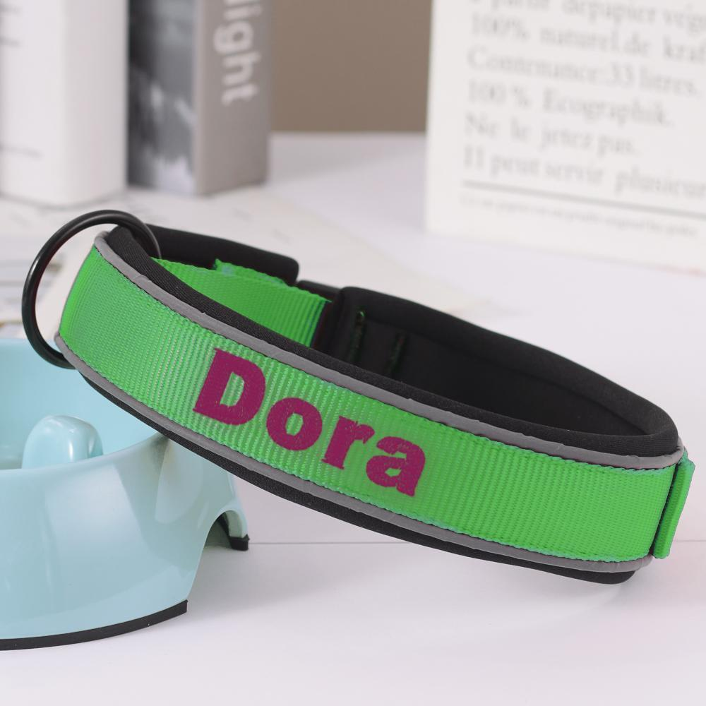 Custom Engraved Pet Collar Nylon Collar Green-Purple Word
