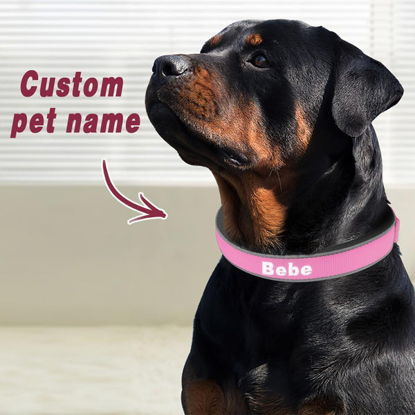 Custom Engraved Pet Collar Nylon Collar Pink-White Word