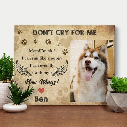 Custom PICTURES ON WALL PET MEMORIAL PHOTO DIY FRAME-DON'T CRY FOR ME