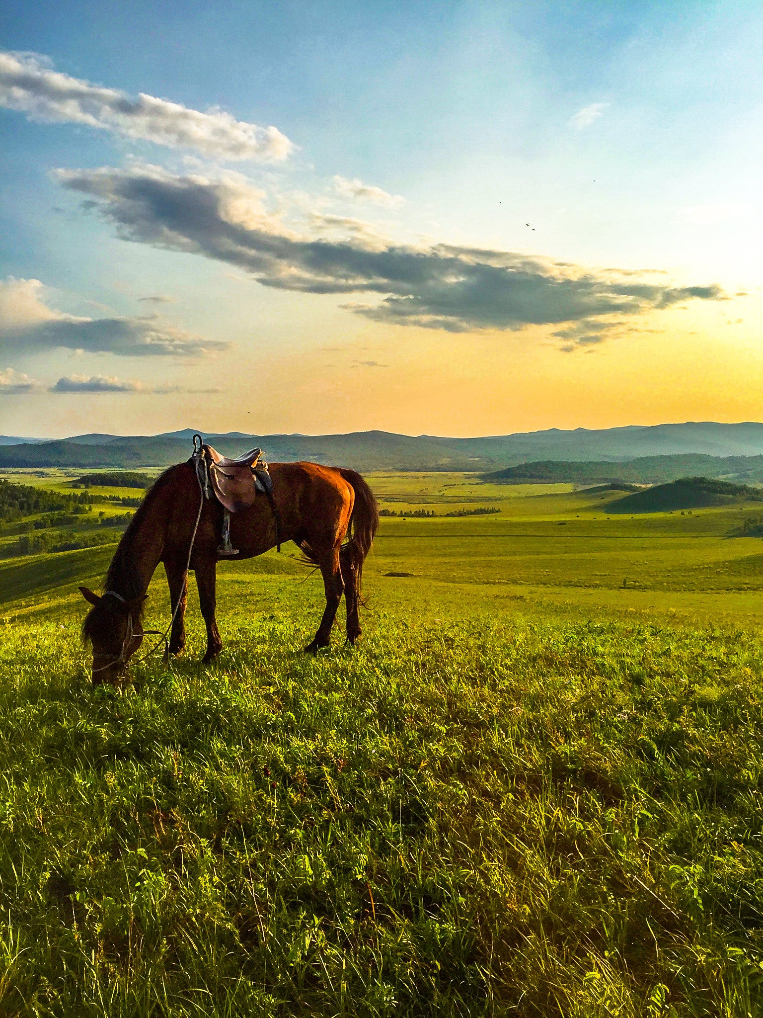 Luxury Inner-Mongolia Tours, Private Inner Mongolia Trips ... |Inner Mongolia Housing
